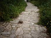 Fotos de mi Viaje a athenas-foto20.jpg