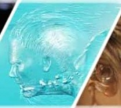 Houdini o Maya        -fxwater4nw.jpg