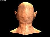 Malito::  Una cabeza amorfa :P-malito-03_rendering.jpg