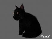 Cg Challenge -YeraY--gato1.jpg