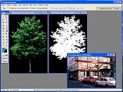 integracion imagenes-capturar.jpg