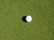 Golf Day-golf-green-myco-w5.jpg