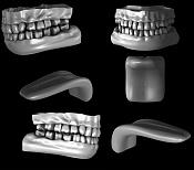 Ejercicios Varios-dentadura1.jpg