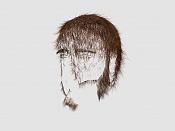 Project RaMaIN_The Human-hair-02.jpg