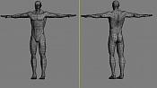 Project RaMaIN_The Human-anatomy-wip-3d-wireframe.jpg