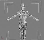 Cierva texturada con problema de fondo       -wire.jpg