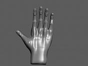 8ª actividad de modelado: Manos-the-hand.jpg