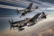avioncitos-p51.jpg