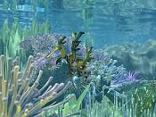 Fondo marino-sub09.jpg