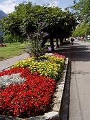 Fotos de mi viaje a Interlaken-p1010560.jpg