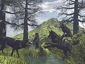 Lobos-lobos_niveles.jpg