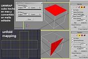 Unwrap-cubomax.jpg