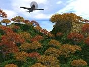 unos paisajes-selva.jpg