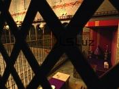 El Pilar Desconocido-claustro_2500_celosia_rc2-dof-ic_50.jpg