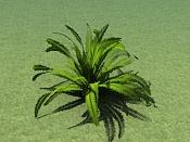Cuestion acerca del Onyx Tree-v_palm_phoe_cana_02_01.jpg