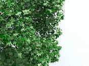 Cuestion acerca del Onyx Tree-color-per-vertex.jpg