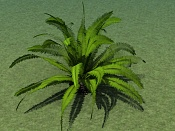 Cuestion acerca del Onyx Tree-02a.jpg