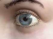 dsolo: Texturado y postpro   an eye for an eye  -testojocdf1.jpg
