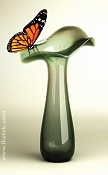 Bodegon-mariposa.jpg