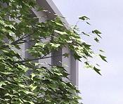 Cuestion acerca del Onyx Tree-detplatano1.jpg