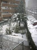 Nieva En Jaen-pict0172.jpg
