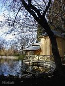 Fotos Naturaleza-imga0515_ret.jpg