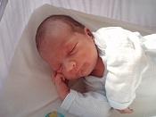 almu ha tenido su niño   -p1310066.jpg