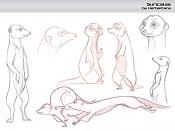 Cartoon-suricatas_by-herbiecans.jpg