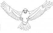 *El Dibujo del Dia *-cuervo.jpg
