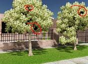 Problema con arboles Speedtree-problema.jpg