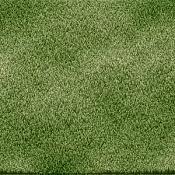 Os gusta este cesped -hierba.jpg