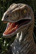 No he podido evitarlo y   -velociraptor_6001.jpg