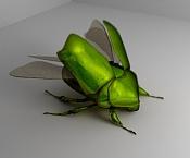 Integracion 3D de escarabajo-prueba-2011.jpg
