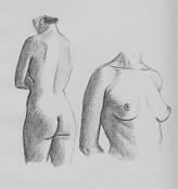 La anatomia y yo-anat13.jpg