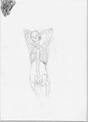 aprendizaje de J R Segura-mujer_huesos1.jpg