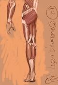 Sketchbook de RR-anatomia2.jpg