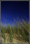 Fotos Naturaleza-443745196_6ba726b089_b.jpg