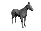 caballo salvaje;- -foto30.jpg