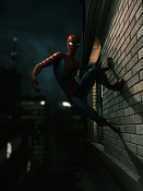 Spider-Man Homenaje-untitled-1-copy.jpg