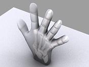 rayos x de mano-mano5.jpg