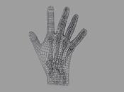 rayos x de mano-mano8.jpg