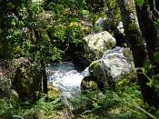Fotos Naturaleza-p1080297.jpg