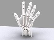 rayos x de mano-mano13.jpg