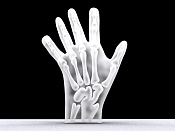 rayos x de mano-mano16.jpg