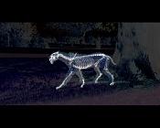 Documentales prehistoricos-foto-d-entes-de-sable-rayos-x.jpg