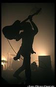 Fotografias de conciertos-nin_0016.jpg