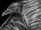 4ª actividad de Ilustracion: Una actividad para meros mortales-eagle.jpg
