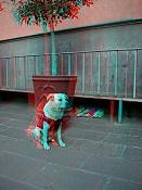 Foto 3D  anaglifas -hurbanismo.jpg