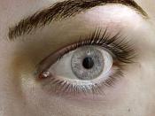 ojo-ojo36.jpg