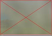 wmv versus macromedia director-director.jpg